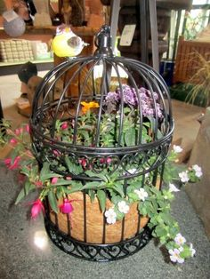 Use the brown matting to hide the pot is a good idea but I think I would preferring a pot with interest. Birdcage Planter, New Business Ideas, Unique Gardens, Bird Cages, Mediterranean Style, House Party, Yard Ideas, Bird Houses, Outdoor Living