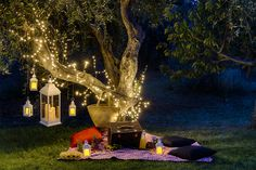 Romantic picnic for an evening for two: under a plant decorated with bright branches, lanterns and LED candles Romantic Camping, Romantic Picnics, Romantic Evening, Romantic Getaways, Indoor Picnic, Backyard Picnic, Backyard Trees, Night Picnic, Picnic Date
