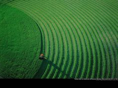 Yann Arthus-Bertrand, Earth From Above