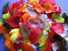 Mixed Feathers - Autumn Colours, childrens crafts, children's craft supplies