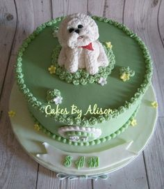Bichon Frise Cake Mini Dogs, Cute Dogs And Puppies, Dog Cupcakes, Cupcake Cakes, Fancy Cakes, Cute Cakes, Cutest Dog Ever, Puppy Party, Dog Eating
