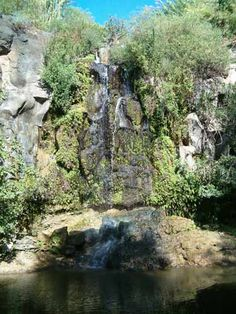 נחל אל על 19/8/2013 Israel, Waterfall, Nature, Outdoor, Outdoors, Naturaleza, Nature Illustration, Outdoor Life, Garden