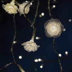 Frosted Rose LED String Light