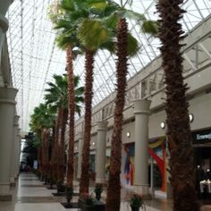 Now this is a mall! Boca Raton, FL.  Gotta love this Mall, I know I did :)