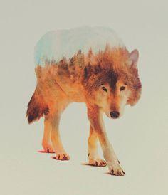 doble exposición andreas lie selfpackaging lobo