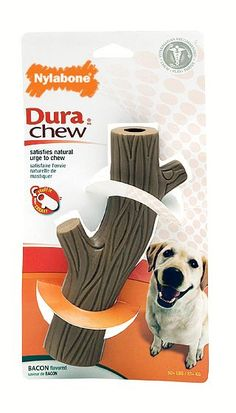 Outstanding dog products info is readily available on our web pages. Check it out and you wont be sorry you did. Chihuahua Dogs, Pet Dogs, Dogs And Puppies, Pets, Shelter Dogs, Animal Shelter, Animal Rescue, Terrier Mix, Terriers