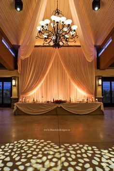 Stunning wedding decor and lighting at Mastronardi Estate Winery in Kingsville, Ontario. Blue Roses, Rose Design, Commercial Photography, Kingsville Ontario, Weddingideas, Wedding Details, Real Weddings, Wedding Photos, Wedding Decorations