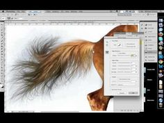 How to Quickly Select Images - Cut Out Detailed Images in Photoshop CS5 - YouTube