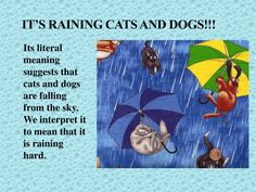 Idioms Used in Daily Life with Their Meaning – ESL Buzz Common English Idioms, Common Idioms, Learn English For Free, Improve Your English, Phonics Words, Raining Cats And Dogs, Ielts, English Language, Meant To Be