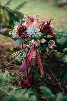Fall wedding bouquet inspiration - rich colours and incredible textures for a statement floral display. Photo by Olive Photography Fall Wedding Bouquets, Flower Bouquet Wedding, Autumn Wedding, Rose Wedding, Christmas Wedding, Flower Bouquets, Bridal Bouquets, Dream Wedding, Wedding Dresses