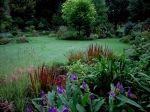 en tuin met een unieke verzameling bijzondere planten. In het voorjaar kan men hier genieten van honderden prachtige Helleborussen en duizenden bloembollen. Zomers spelen vooral Hosta's, Hortensia's en Stokrozen in combinatie met andere, vaak zeldzame, planten een hoofdrol. Bladkleur, -vorm en – structuur zijn hier belangrijk: daardoor blijft de tuin tot ver in de herfst boeien, ook ZONDER bloei. In de hobbykwekerij zijn planten uit de volle grond te koop.