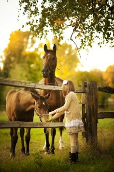 Sharing a special moment   #horses  #children   #country