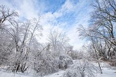 After snow by CSC_PhotoHub Cho