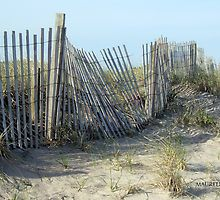 Beach Fence by Maureen Zaharie