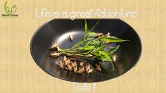 Life is a great adventure. Taste it. #Entomophagy http://diminicricket.com/