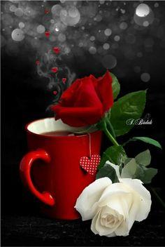 Morning coffee with roses . morning rose, tea and books, coffee heart, caffeine Beautiful Gif, Beautiful Morning, Beautiful Roses, Pretty Roses, Good Morning Coffee, Good Morning Good Night, Morning Pics, Coffee Heart, Coffee Love
