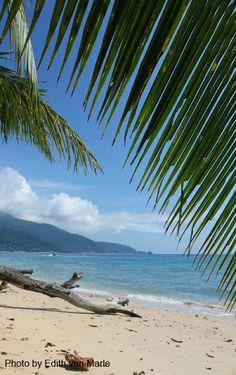 Tioman ABC beach