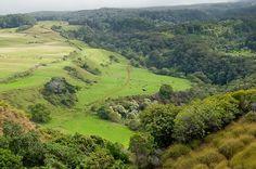 ZipLine in Maui  Piiholo Ranch:The 2,800ft Grand Finale