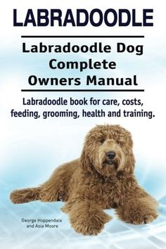 Labradoodle Book for Care, Costs, Feeding, Grooming, Health and Training. Labrador Puppy Training, Dog Training Tips, Australian Labradoodle, Labradoodle Dog, Labradoodles, Goldendoodles, Labradoodle Haircuts, Puppy Care, Dog Care