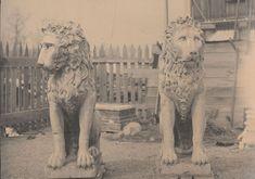 A legacy of loving care - Biltmore Verona Range, Ashville Nc, American Mansions, Grove Park Inn, Lake Lure, Biltmore Estate, Historical Architecture, Historic Homes, Old Photos