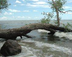 Lake Winnebago Wisconsin   Shore of Lake Winnebago, WI   Flickr - Photo Sharing!