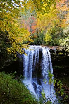 See photos and video of Dry Falls near Highlands in the North Carolina mountains, a waterfall that you can walk behind in the Nantahala National Forest. Beautiful Waterfalls, Beautiful Landscapes, North Carolina Waterfalls, Highlands Nc, North Carolina Mountains, Les Cascades, Appalachian Mountains, Nc Mountains, Nature Pictures