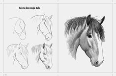 Draw Horses Horse Diaries- An illustrator's journey Horse Drawing Tutorial, Horse Pencil Drawing, Animal Line Drawings, Horse Drawings, Pencil Art Drawings, Animal Sketches, Art Drawings Sketches, Easy Drawings, Easy Sketches For Beginners