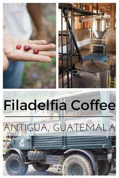 Filadelfia Coffee Tour | Antigua, Guatemala