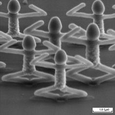 Concours photo au microscope électronique 06BestIon technologie photo art