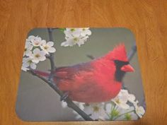 FREE shipping! Cardinal Mouse Pad - Cardinal with Flowers