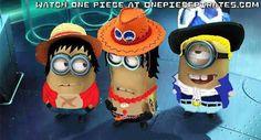 Luffy Ace Sabo: Minions