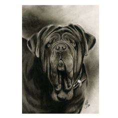ART OF DREAMS Neapolitan Mastiff Metal Print #BullyDogNation