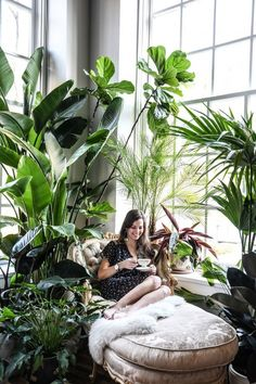 This bohemian house in Baltimore is filled with over 170 Monstera plants …