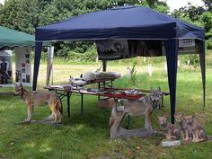 9.7.2016 - Sommerfest  Infostand zum Thema Wolf