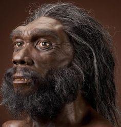 Homo Heidelbergensis: especie del género Homo que surgió hace más de 600 000 años y eran individuos altos que tenían 1,80 m de estatura y muy fuertes, de grandes cráneos, muy aplanados con relación a los del hombre actual, con mandíbulas salientes y gran abertura nasal.