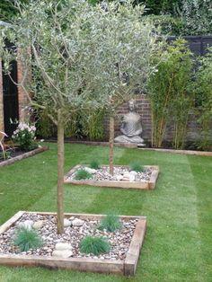 Kiesbeet Anlegen Mediterran Garten Olivenbäume Buddha Gras Modern