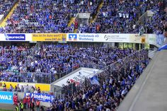 FC SCHALKE 04 (107)