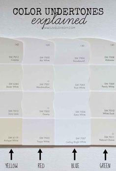 Color Undertone Guide
