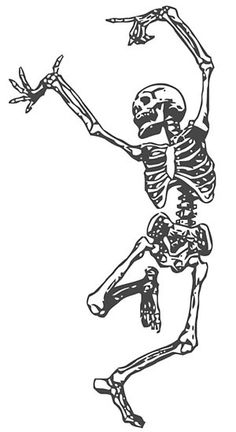 Skeleton of Man ~ Free Vintage Halloween Clip Art Illustration Skeleton Dance, Skeleton Tattoos, Skeleton Art, Skeleton Watches, Skeleton Drawings, Skeleton Makeup, Skeleton Flower, Skull Drawings, Unique Drawings