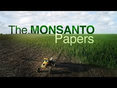 The secret tactics used by global chemical giant Monsanto, to protect its billion-dollar business and its star product, the weed killer, Roundup. Bayer Ag, Evil Empire, Weed Killer, Four Corners, Abc News, Health And Wellbeing, Climate Change, Documentaries, The Secret