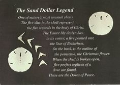 image about Legend of the Sand Dollar Poem Printable called Sand Greenback Get pleasure from Poem Similar Keywords and phrases Rules - Sand