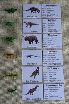 Montessori-Inspired Dinosaur Activities Using Dinosaur Replicas Dinosaur Theme Preschool, Dinosaur Activities, Dinosaur Party, Science Activities, Toddler Activities, Dinosaur Crafts Kids, Dinosaur Projects, Montessori Materials, In Kindergarten