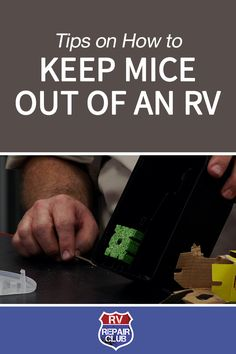 Tips on How to Keep Mice out of an RV