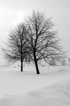 january in helsinki, finland