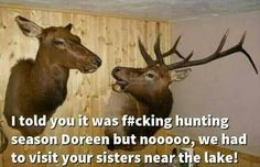 Dump A Day Funny Pictures Of The Day - 64 Pics