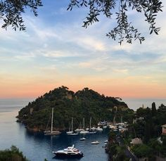 Dinner with an incredible view of #Portofino at our La Terrazza Restaurant. Photo by @claritachiquitita
