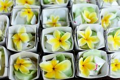 Plumerias shipped from Molokai Plumeria Company, Hawaii day prior to the wedding and arrived in perfect condition smelling as fresh as the day they were picked on the farm in a far off warm place- Loved it, I would recommend them to anyone!!!! very decent priced as well.