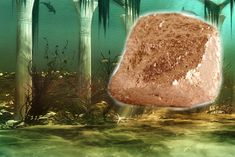 Orichalcum: Legendary Metal of Atlantis Found in 2,600-Year-Old Shipwreck. The mysterious metal spoken of in ancient Greece, said to glimmer with a reddish light in Atlantis, may have been found.
