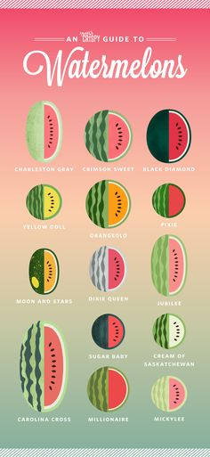 When you think of a watermelon, chances are good that you're imagining a large, round melon with a green rind and a bright pink, nearly red interio...