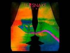 Tensnake feat. Nile Rodgers & Fiora - Good Enough To Keep